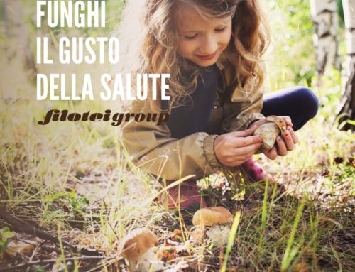 Funghi – il gusto della salute