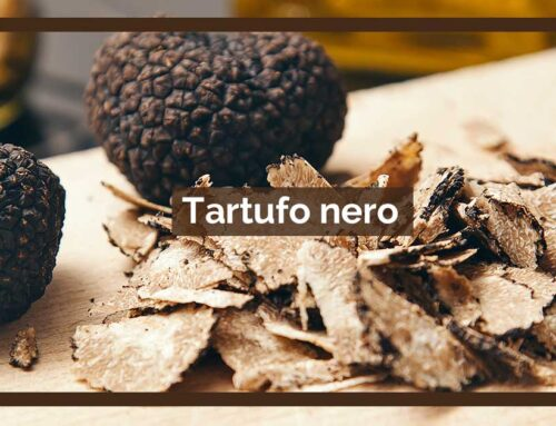 Il tartufo nero – una pepita d'oro