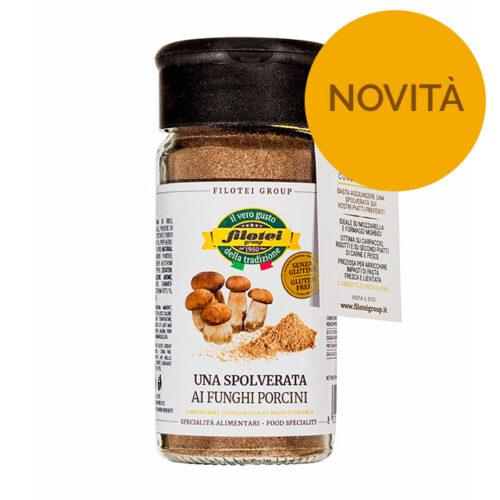 spolverata-funghi-porcini-new